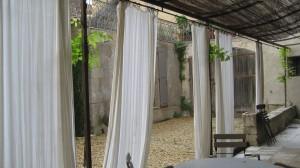 Provence, June 2009 007